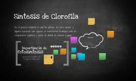 Síntesis de Clorofila