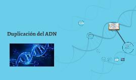 Duplicacion del ADN