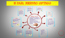 Copy of II PAR: NERVIO OPTICO