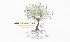 Metamorphosis - English