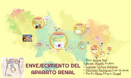 ENVEJECIMIENTO DEL APARATO RENAL