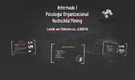 Internado Organizacional - Hochschild Mining