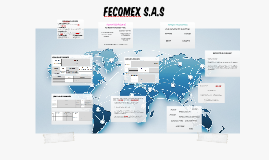 FECOMEX S.A.S