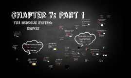 Chapter 7: Part 1