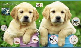 Copy of los perritos