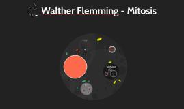 Walter Flemming - Mitosis