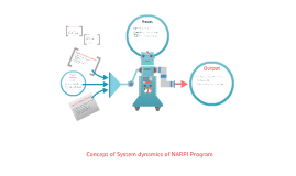NARPI system dynamic