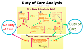 Duty of Care Analysis