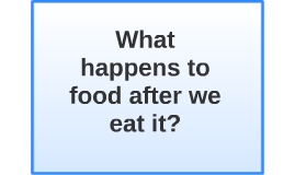 What happens to food after we eat it?