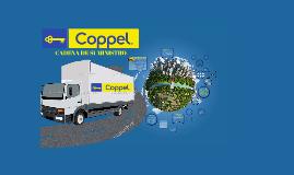 Centro Logistico Coppel