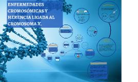 ENFERMEDADES CROMOSÓMICAS Y HERENCIA LIGADA AL CROMOSOMA X