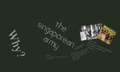 TH SINGAPOREAN ARMY
