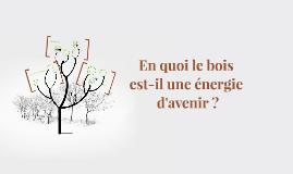 En quoi le bois est-il une énergie d'avenir ?