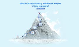 Servicios de capacitación y, asesorías de apoyo en el área