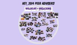 2014 Peer Advisers