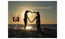 REPRODUCCIÓN DE LOS SERES HUMANOS