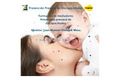 Copy of Prevención Prenatal de Discapacidades