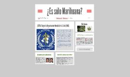 Copy of ¿Es sólo Marihuana?