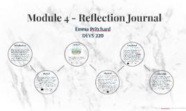 Module 4 - Reflection Journal