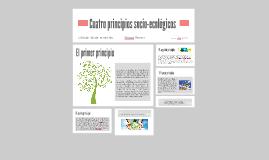 Cuatro principios socio-ecológicos