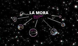 I live in la Mora.