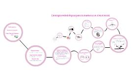 Copy of Estrategias Metodológicas De Enseñanza En El Nivel Inicial.