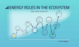 ENERGY ROLES IN THE ECOSYSTEM