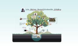 Luis_Mulato_Bogotá/Colombia_LifeMap