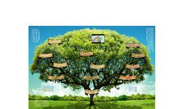 Copy of ÁREAS NATURALES PROTEGIDAS U SERVICIOS AMBIENTALES