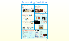Copy of AP Bio- Evolution 4:  Measuring Evolution