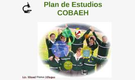 Plan de Estudios COBAEH