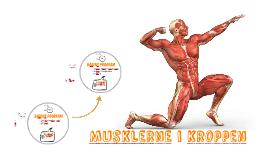 Musklerne i kroppen af AG