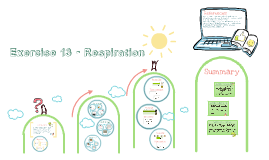Exercise 13 - Respiration