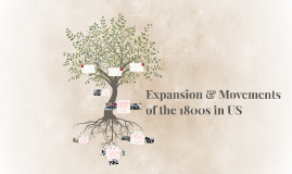 Expansion & Movements of the 1800s in US