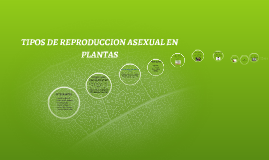 Copy of TIPOS DE REPRODUCCION ASEXUAL EN PLANTAS