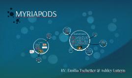 Copy of MYRIAPODS