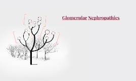 Glomerular Nephropathies