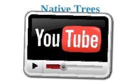 Native Trees 2