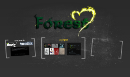 The Forest Heart Project