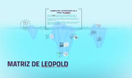 Copy of ELABORACIÓN E INTERPRETACIÓN DE LA  MATRIZ  DE LEOPOLD
