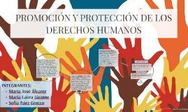 Copy of PROMOCIÓN Y PROTECCIÓN DE LOS DERECHOS HUMANOS