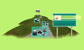 Copy of ruta de mejora