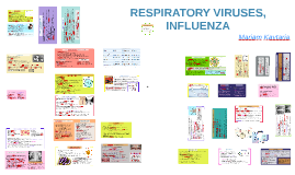 RESPIRATORY VIRUSES, INFLUENZA
