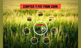 Chapter 7 fat from corn