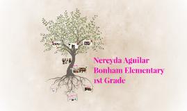 Copy of Nereyda Aguilar