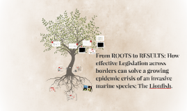 From ROOTS to RESULTS: How Effective Legislation across bord