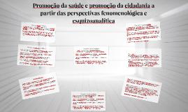 Promoção da saúde e promoção da cidadania a partir das persp