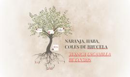 NARANJA, HABA, COLES DE BRUCELA