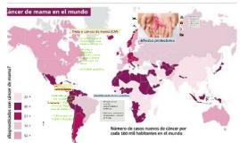 Dieta y cáncer de mama (CM)