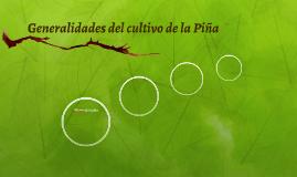 Generalidades del cultivo de la Piña